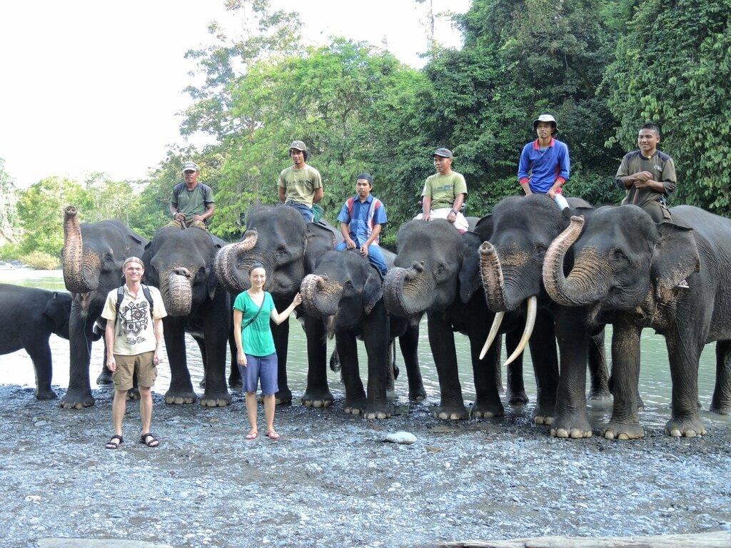 Слоны в Тангкахане
