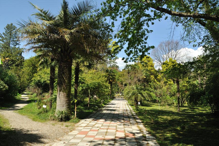 Совратила ботаника смотреть онлайн 25 фотография