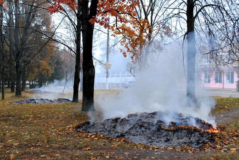 Ямпіль в диму від спалювання опалого листя, фото-1