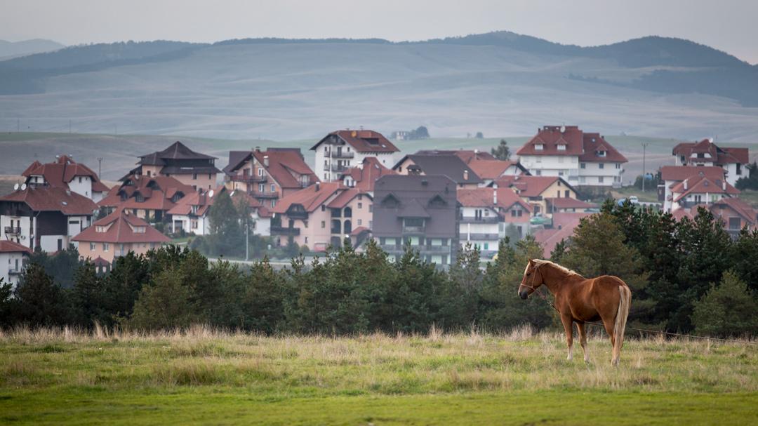 Природа Златибора