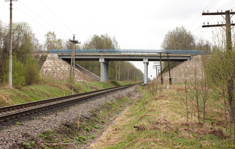 Мост трассы М9 Балтия над перегоном Ржев-Балтийский - Рождествено