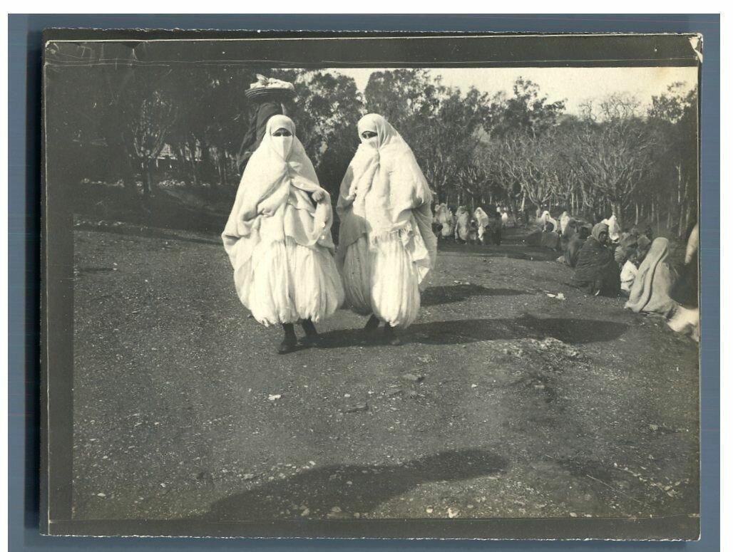 1905. Алжирки