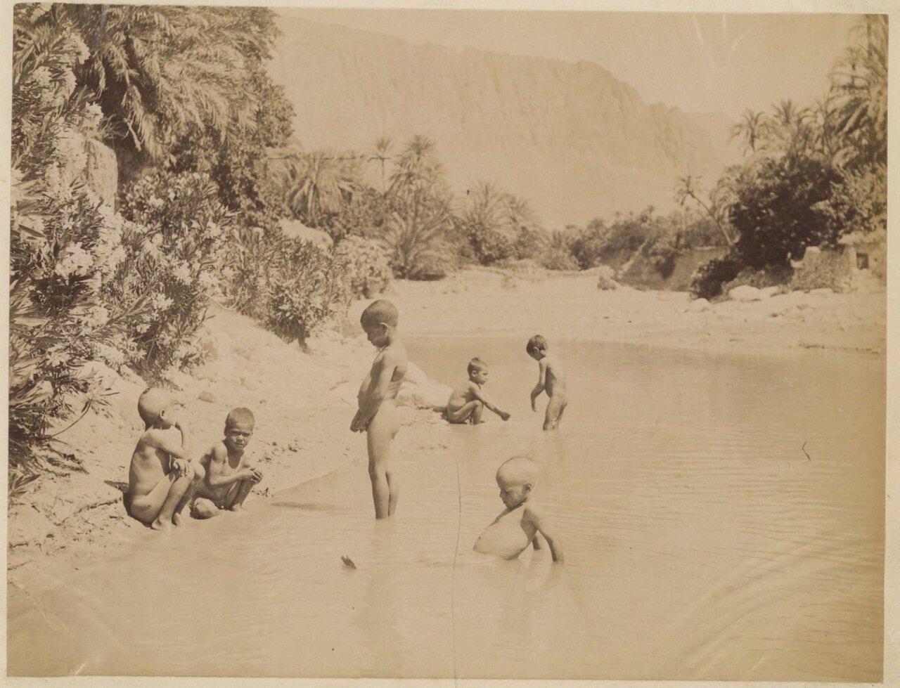 1880 Дети в Эль Кантаре
