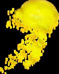 Lemony-freshness_elmt (28).png