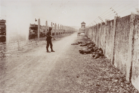 Участь эсэсовцев - охранников концлагерей. ( 40 фото ) 18 + RetrieveAsset.jpg