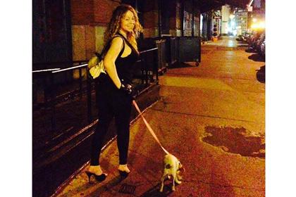 Мэрайя Кэри истратила на отпуск своих собак двести тысяч долларов