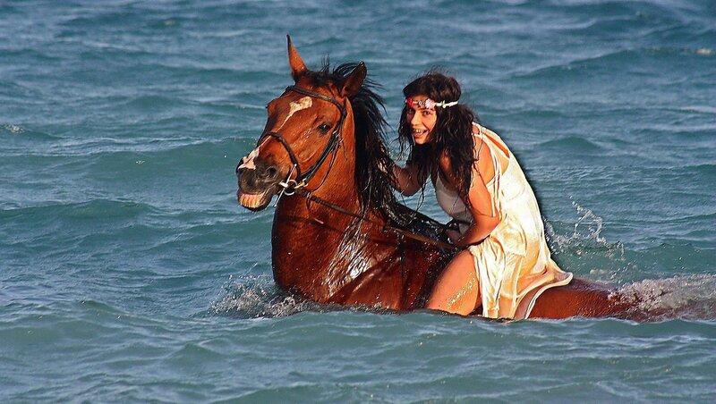 УкрАщение  морского коня ..
