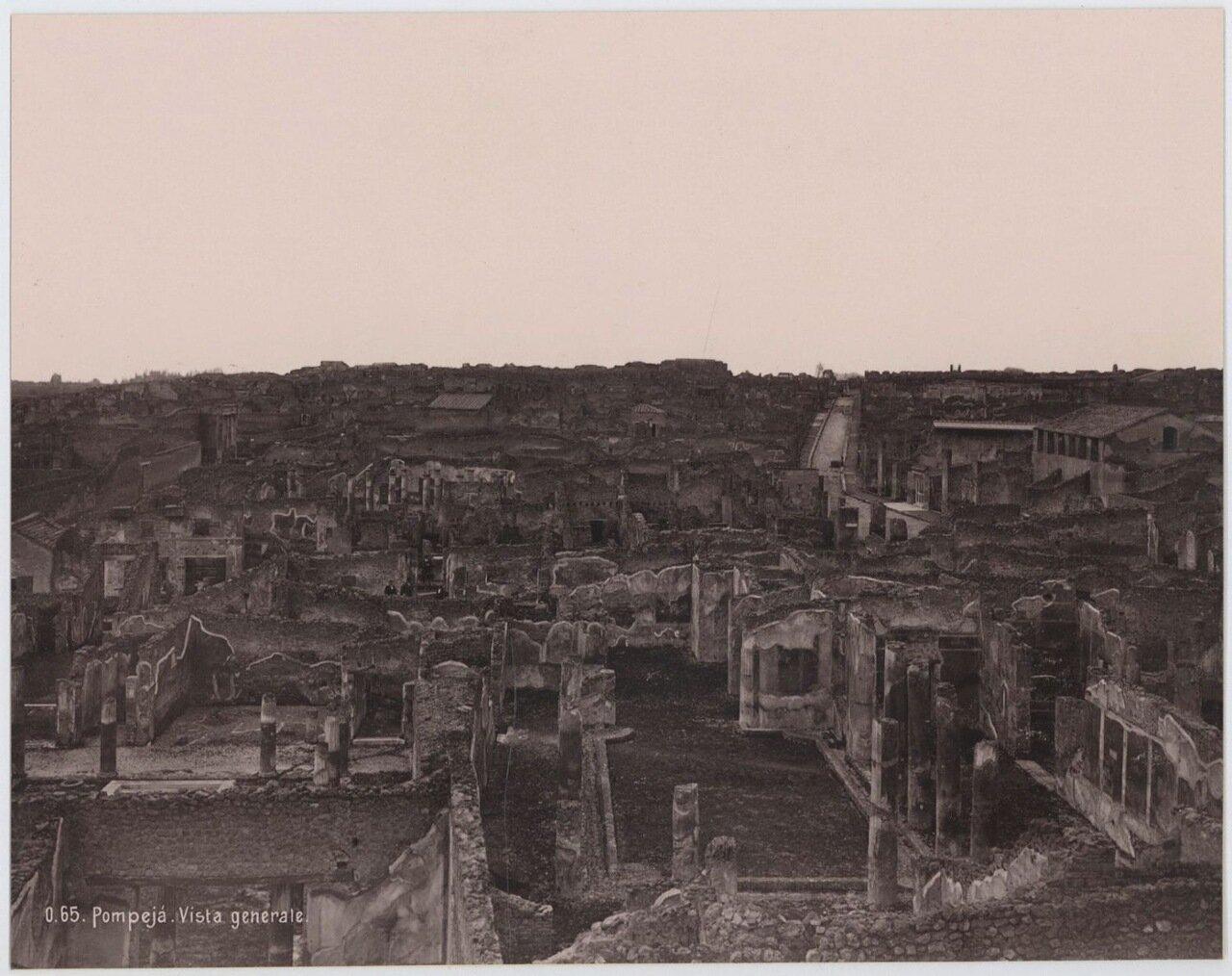1895. Общий вид