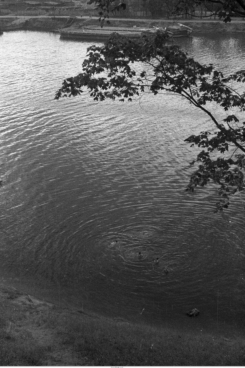 101. Большой Голицынский пруд