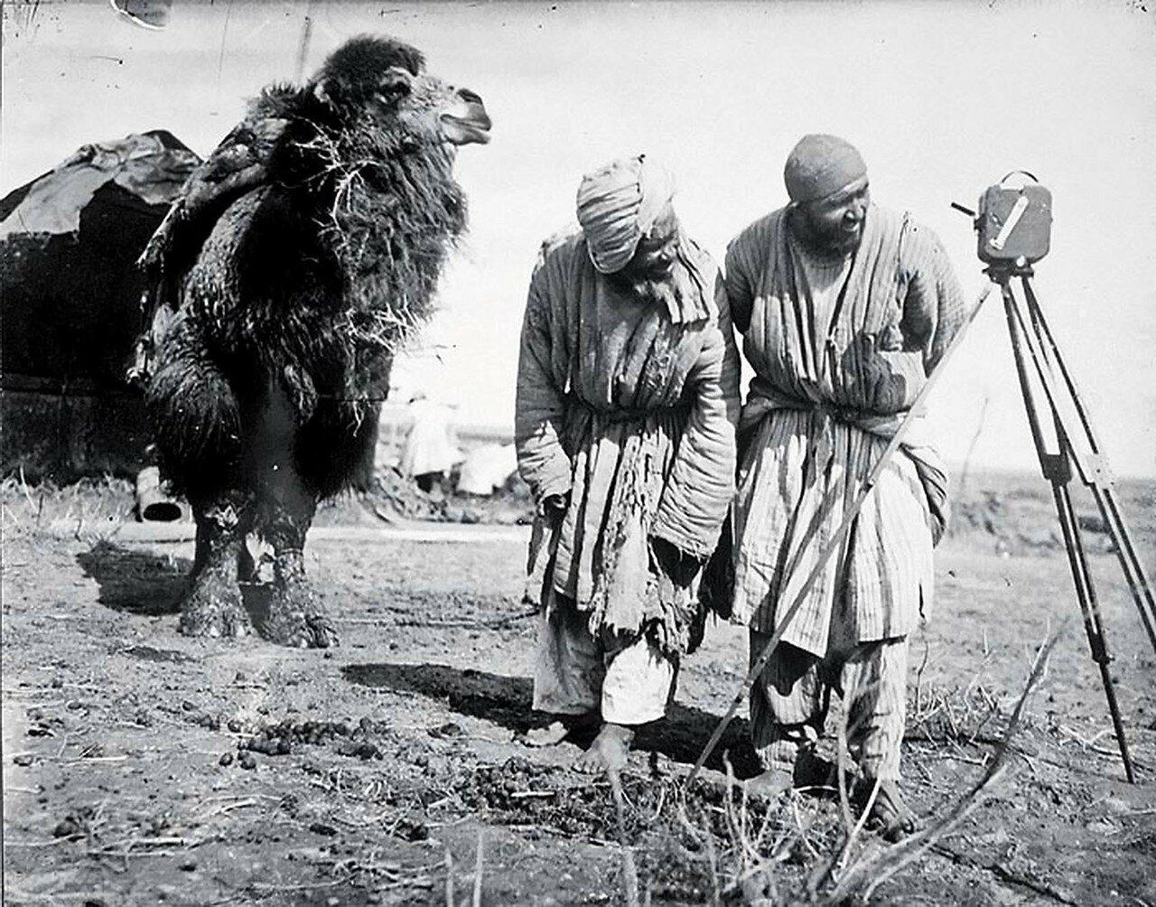 1926. «Любопытный человек» Каршинская степь, Узбекистан