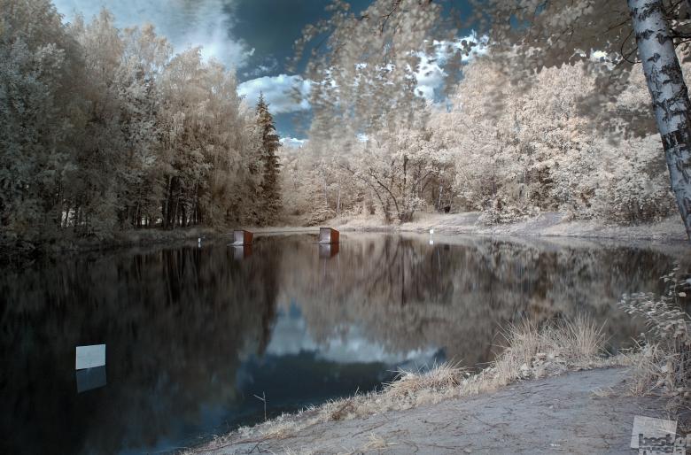 Снежная заводь, автор Светлана Спирина.jpg