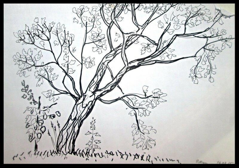 дерево. пр