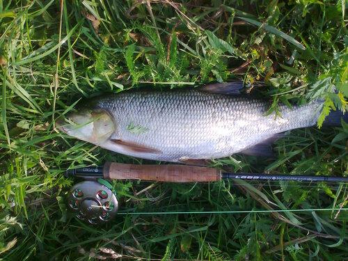 Был на днях на рыбалке... - Страница 6 0_122886_dadd4dc9_L