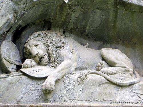 Умирающий лев вблизи