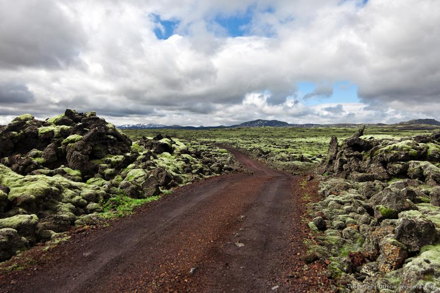 11. Чёрные берега Рейнисфьяра и кратеры вулкана Лаки.