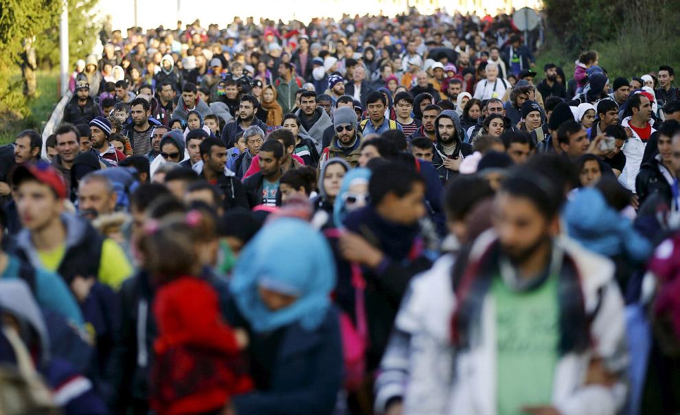 17. Намусорено. На границе Сербии с Хорватией, 24 октября 2015. (Фото Elvis Barukcic):
