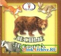 Книга Лесные зверята.