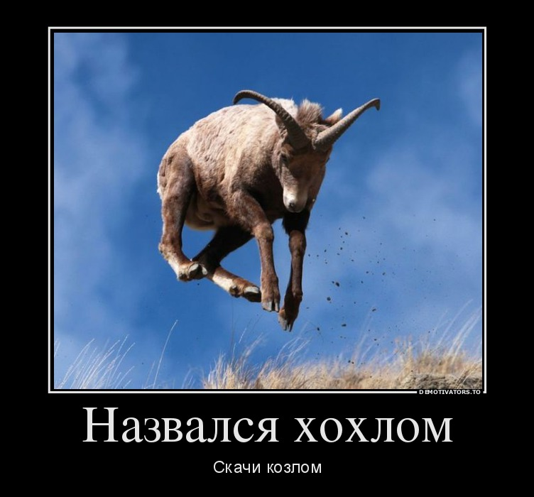 26361_nazvalsya-hohlom_demotivators_to.jpg