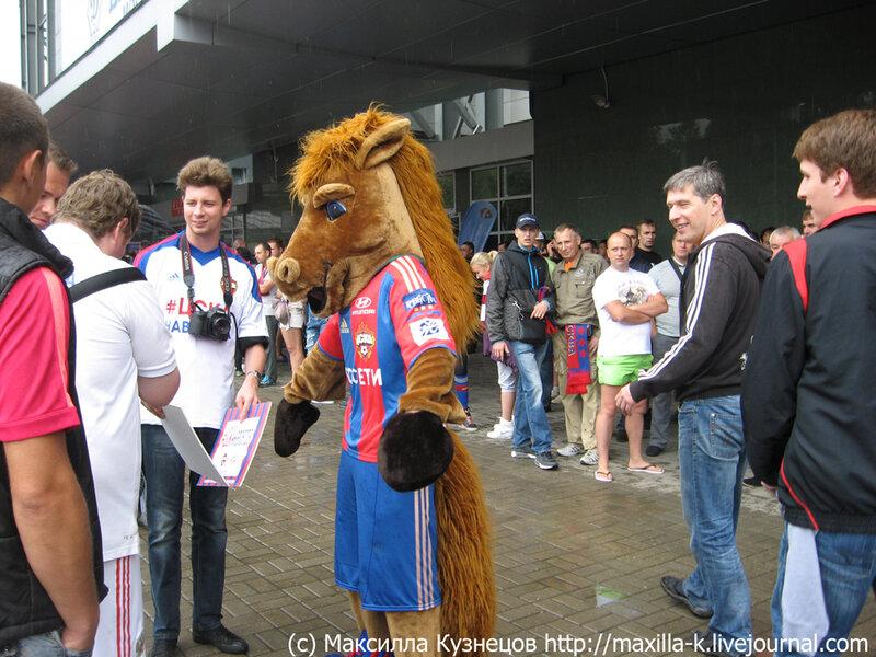 конь на арене Химки