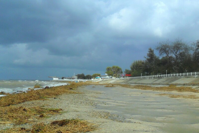 У моря, ветер, большая вода ...SAM_3767 6.JPG