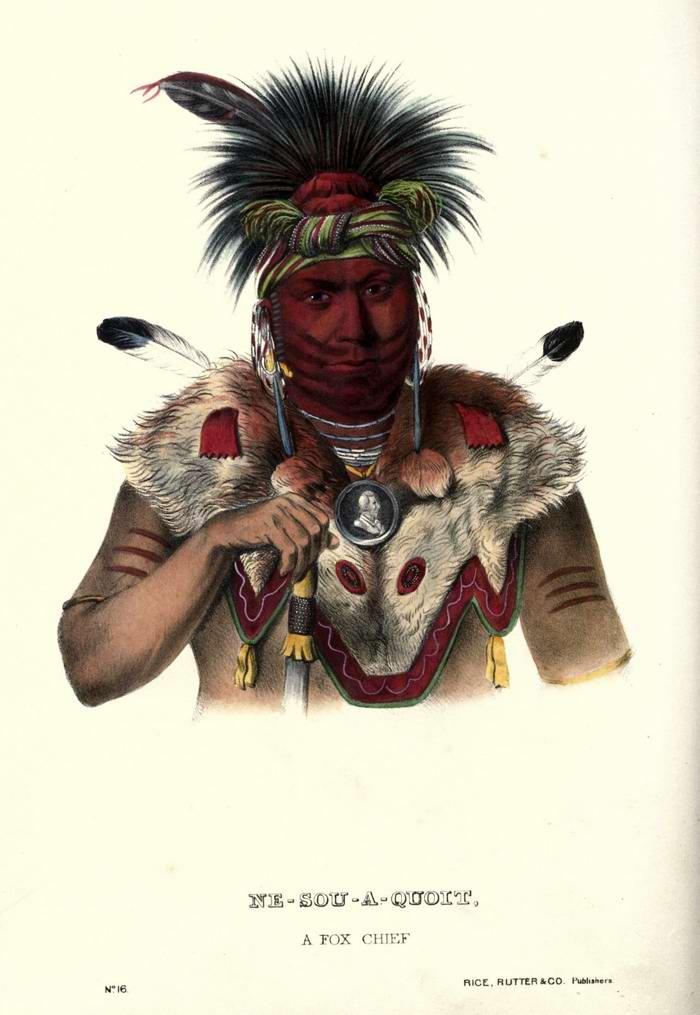 Вождь племени Fox