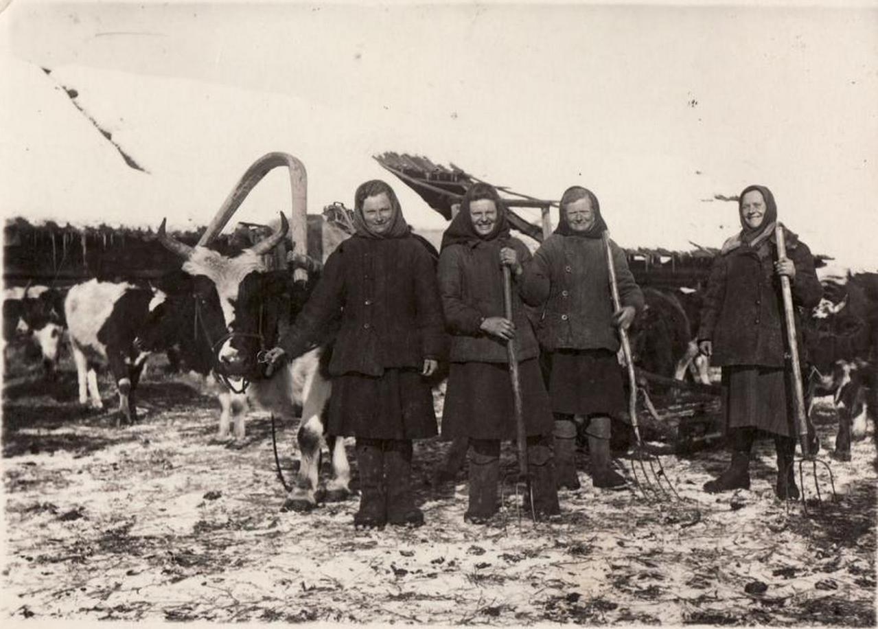 Группа ссыльных литовских женщин на работах в одном из лесных хозяйств Иркутской области. 1952
