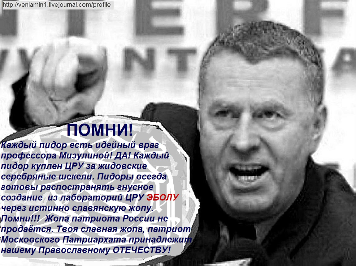 Жириновский, Геи, Мизулина