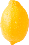 цитрусы (46).png