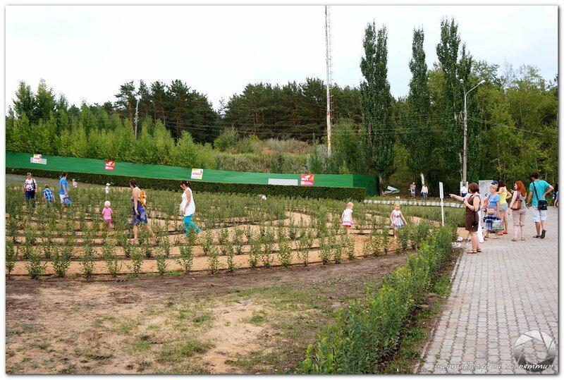 Лабиринт желаний в Тольятти