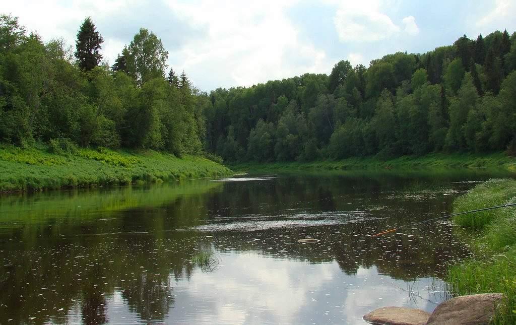 Река Сясь