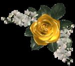 цветы (127).png