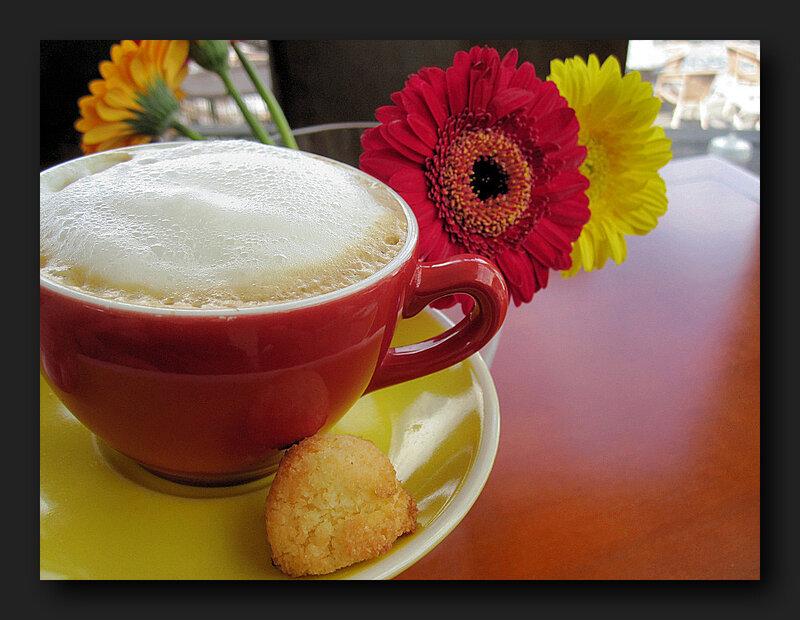 cappuccino-and-gerberas-65d21154-5ea5-4439-b610-ae96c7df9041.jpg