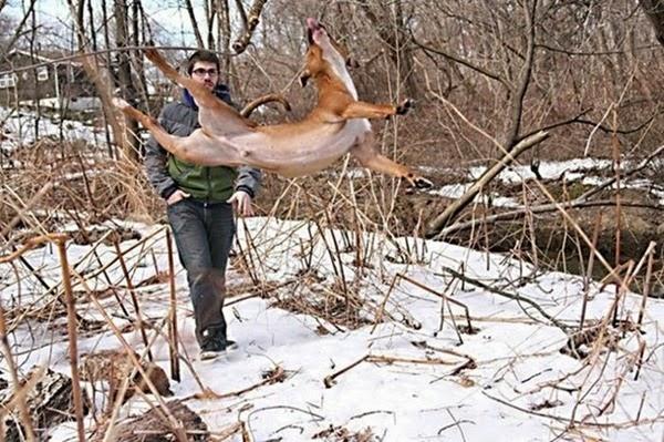 Радостные фотографии прыгающих людей и животных 0 130931 ffa10693 orig