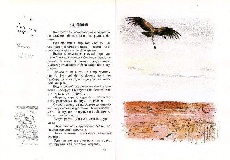 монастырских журавль летчик соколов микитов картинки носить