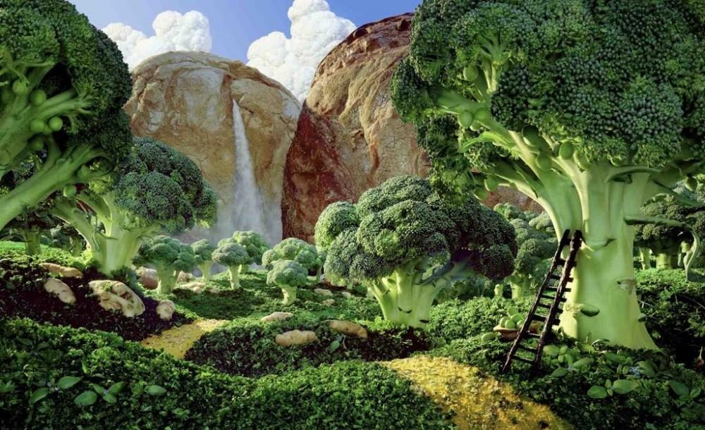 12. Долина брокколи