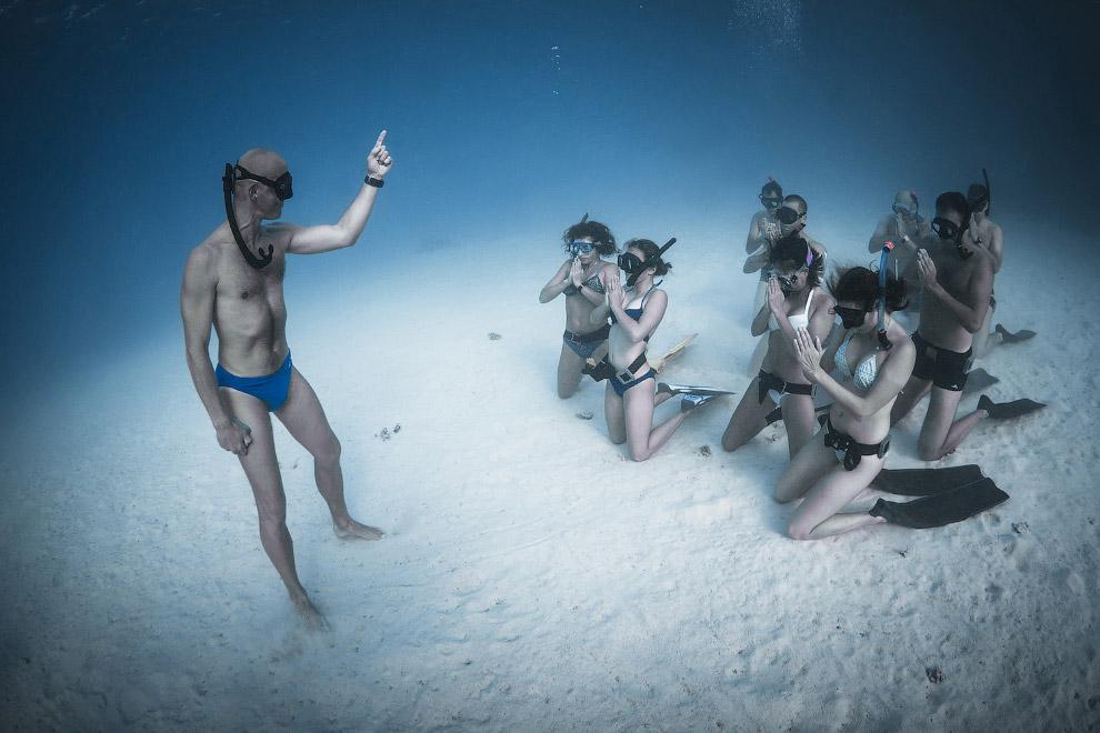 12. Скрестить пальцы. Цапля. (Фото Doris Enders | National Geographic Photo Contest):
