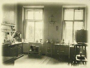 Вид части бактериологического кабинета для госпиталей всех организаций города
