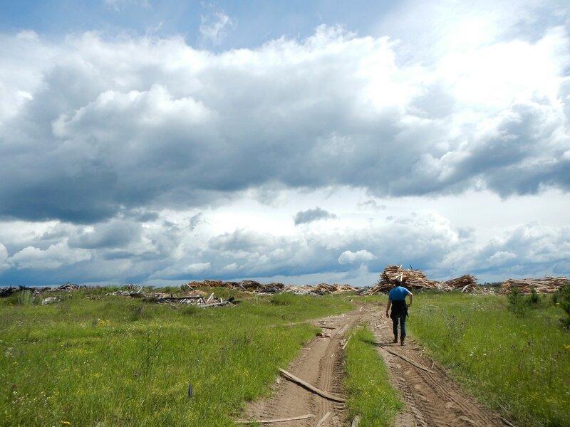 Дорога к свалке горбыля и опилок