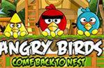 Возвращения в гнездо Злых Птичек