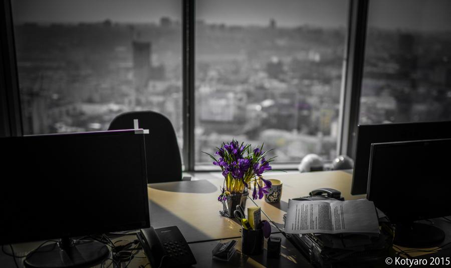 Весна в офисе. Фото: Kotyaro