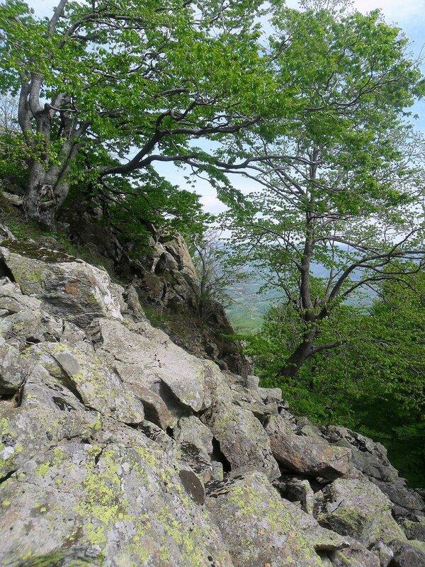 Камни на склоне ... SAM_6734.JPG