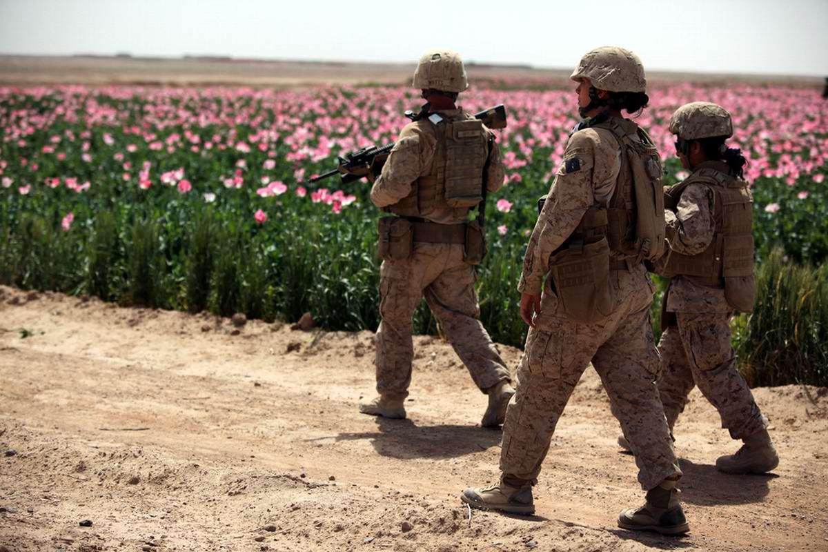 Посреди маковых полей Афганистана - фотографии военнослужащих корпуса морской пехоты США (18)