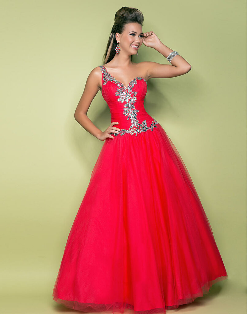 Amazoncom Prom and Prejudice 9780545240789 Elizabeth