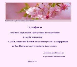Сертификаты виртуальной конференции по тонированию 0_e7d60_40aa27e5_M