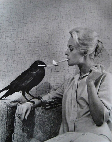 Portrait of Tippi Hedren by Philippe Halsman for The birds directed by Alfred Hitchcock, 1963