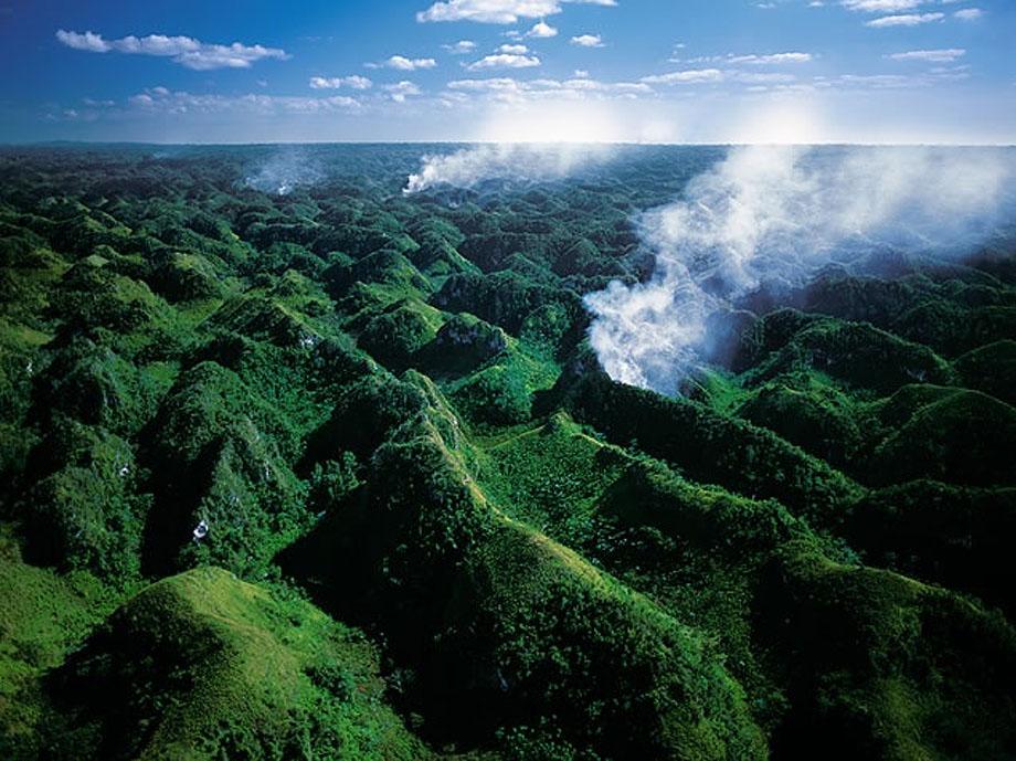 20. Вырубка лесов в национальном парке Лос Хаитис, Доминиканская Республика.