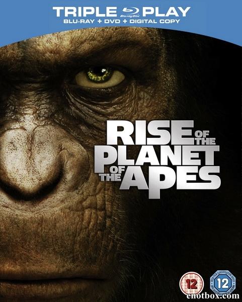 Восстание планеты обезьян / Rise of the Planet of the Apes (2011/BD-Remux/BDRip/HDRip)