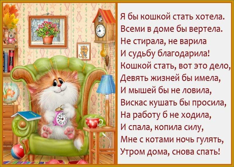 Стихи к подарку кошек 482