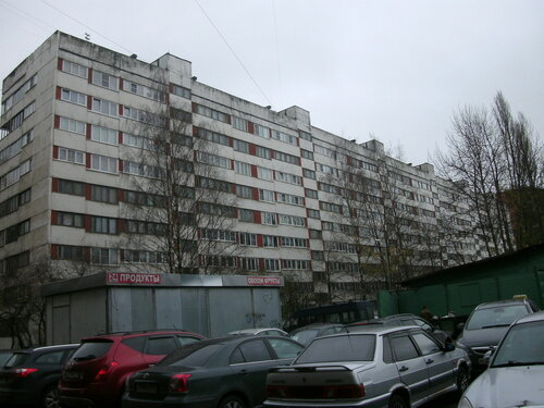 пр. Луначарского 58к2