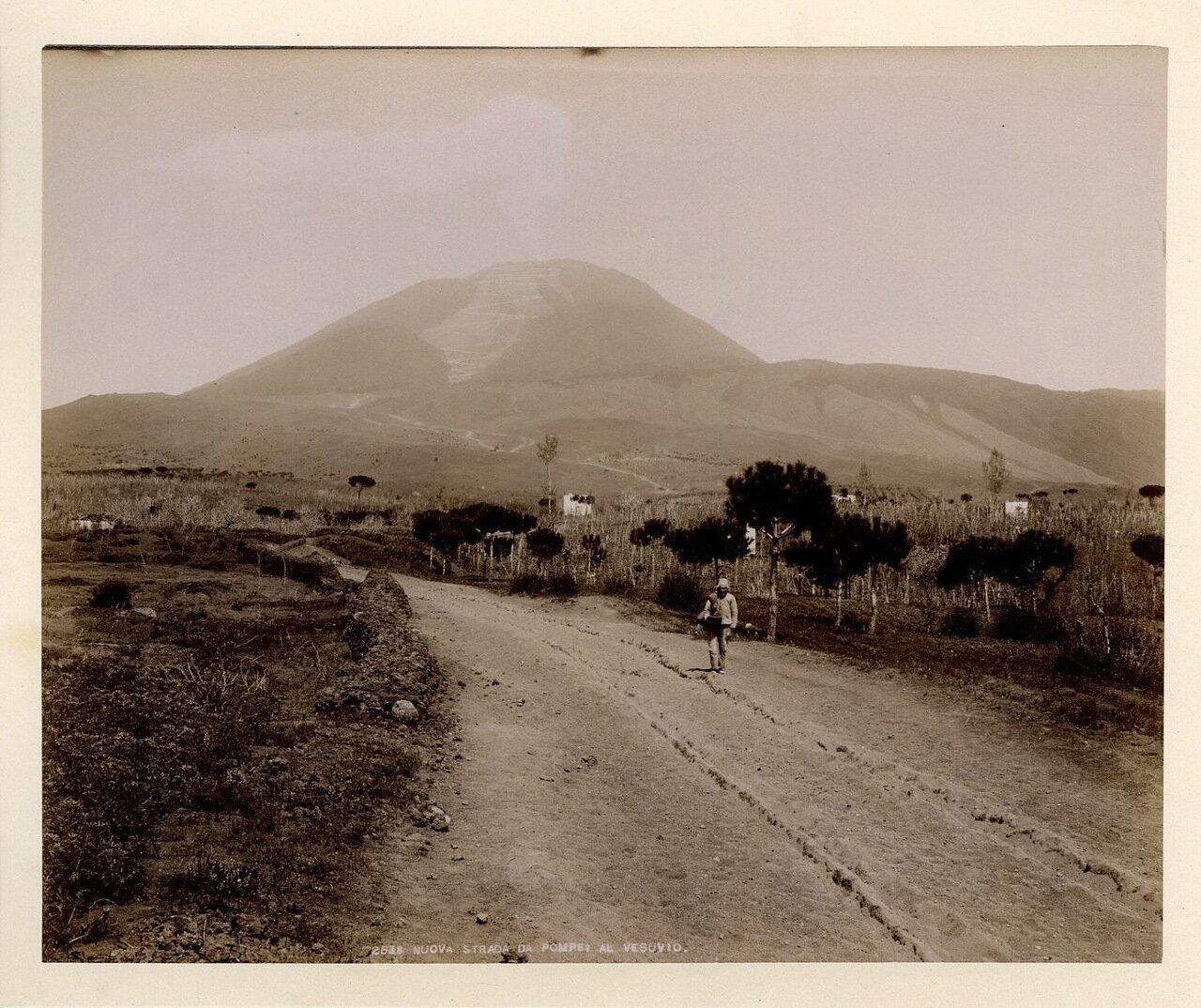 1875. Дорога из Помпей к Везувию